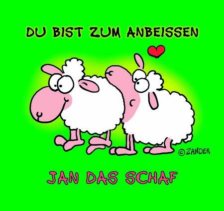 Jan das Schaf Geschenkbuch: Du bist zum Anbeißen - Das Cover