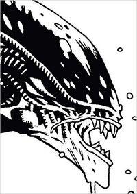 Hier klicken, um das Cover von Aliens Classic Omnibus zu vergrößern