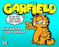 Hier klicken, um das Cover von Garfield 3: Garfield - Ein Krater von Format zu vergrößern