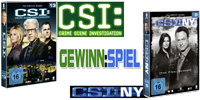CSI - Staffel 13 / CSI:NY - Staffel 9