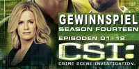 CSI - Staffel 14.1