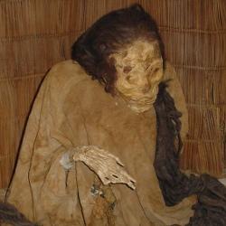 08_mumie