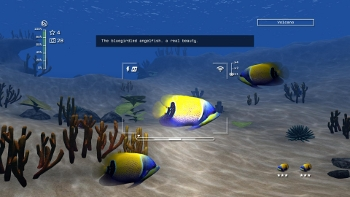 Reef_Shot_Screen1