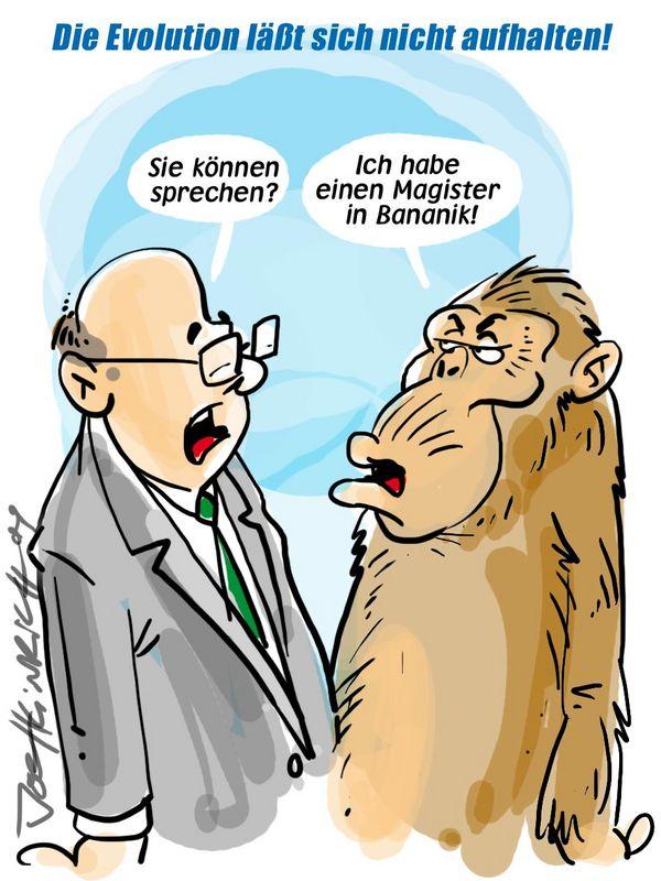 Joe Heinrich - Dschungelbildung!