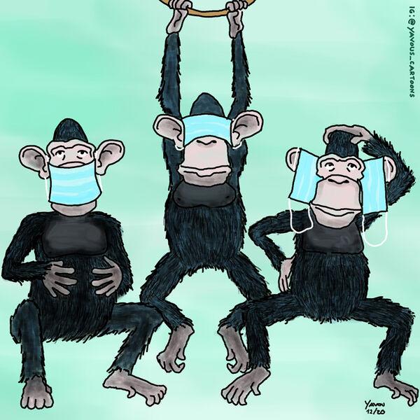 Cartoons von Yavou 2020 - Woche 53 - Affen