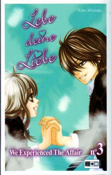 Lebe deine Liebe - We experienced the affair 3 - Das Cover