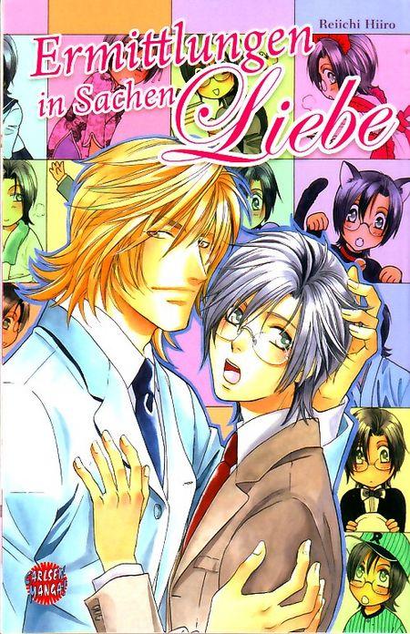 Ermittlungen in Sachen Liebe - Das Cover