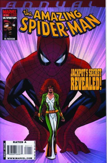 Im Netz von Spider-Man 20 - Das Cover