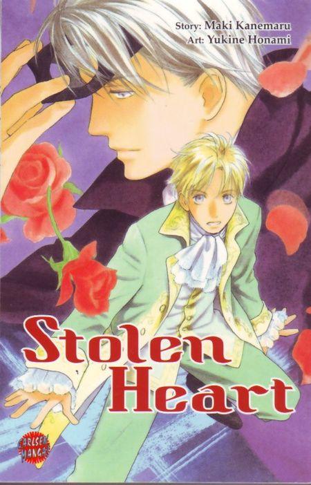 Stolen Heart - Das Cover