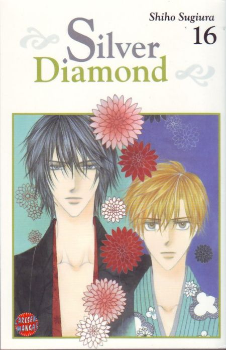 Silver Diamond 16 - Das Cover
