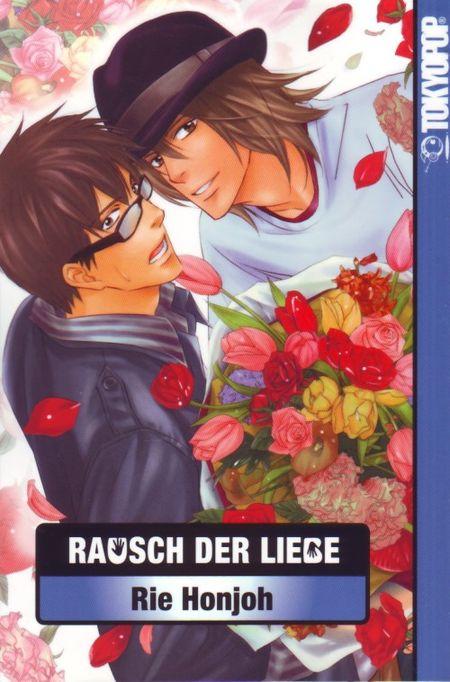 Rausch der Liebe - Das Cover
