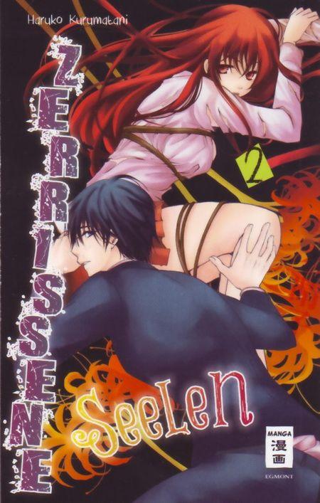 Zerrissene Seelen 2 - Das Cover