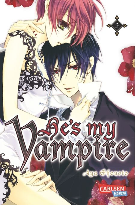 He´s my Vampire 3 - Das Cover