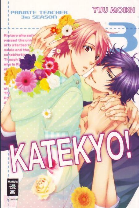 Private Teacher Katekyo! 3 - Das Cover
