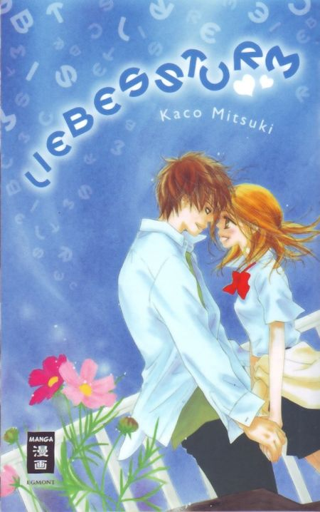 Liebessturm - Das Cover