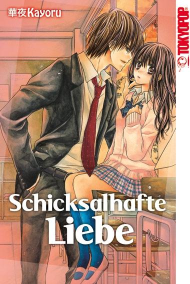 Schicksalhafte Liebe - Das Cover