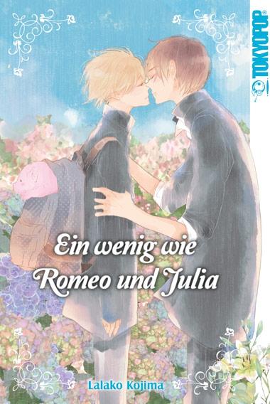 Ein wenig wie Romeo und Julia - Das Cover