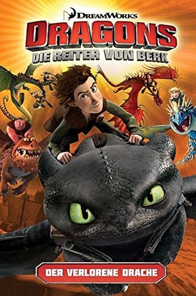 Dragons – Die Reiter von Berk 1: Der verlorene Drache - Das Cover
