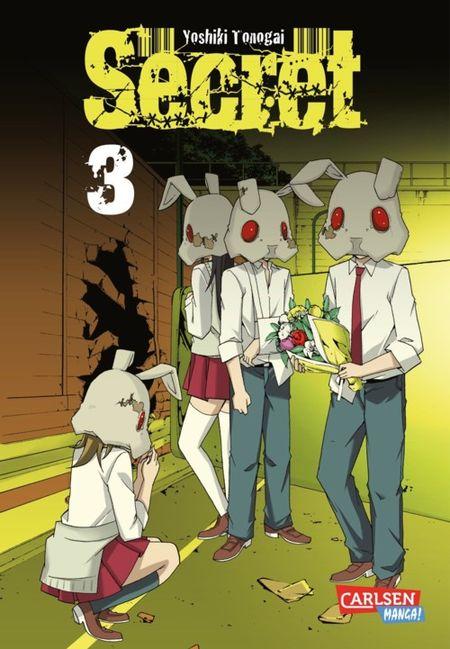 Secret 3 - Das Cover