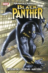 Marvel Knights: Black Panther - Das Cover
