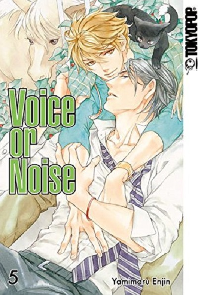 Voice or Noise 5 - Das Cover