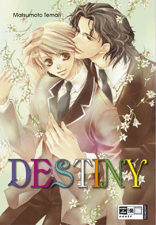 Destiny - Das Cover
