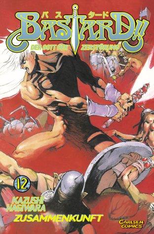 Bastard !! Der Gott der Zerstörung 12 - Das Cover