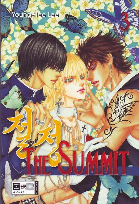 The Summit 3 - Das Cover