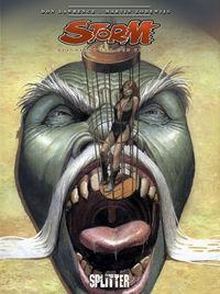 Storm 2: Der letzte Kämpfer - Das Cover