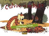 Calvin und Hobbes 10: Schätze! Überall Schätze! - Das Cover