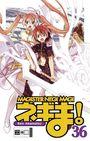 Magister Negi Magi 36
