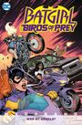 Batgirl ? Birds of Prey Megaband 1: Wer ist Oracle?