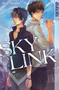 Sky Link 1 - Klickt hier für die große Abbildung zur Rezension