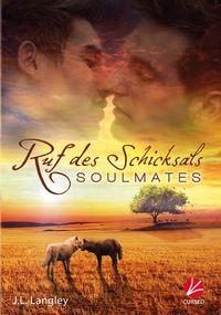 Soulmates – Ruf des Schicksals - Klickt hier für die große Abbildung zur Rezension