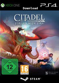 Citadel: Forged with Fire - Klickt hier für die große Abbildung zur Rezension